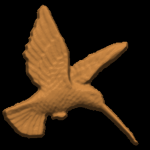 humming bird front